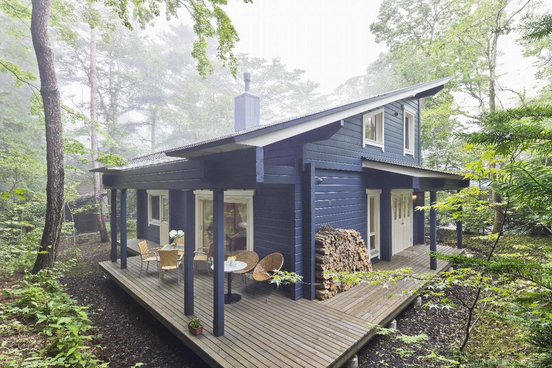 自然の中に佇むブルーグレーのログハウス