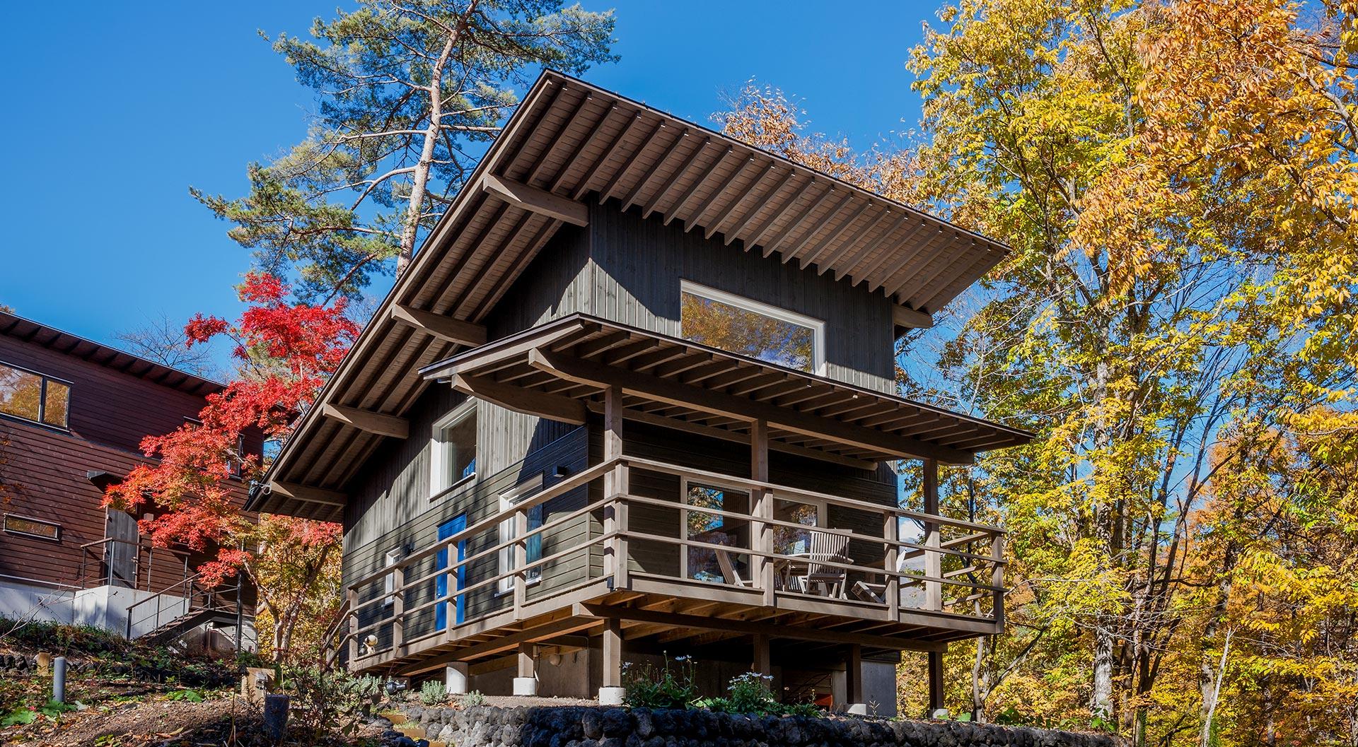 シンプルに高原の森を望む家